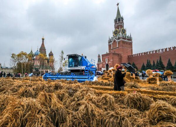 Podzimní festival na Rudém náměstí v Moskvě - Sputnik Česká republika
