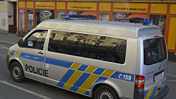Auto české policie - Sputnik Česká republika
