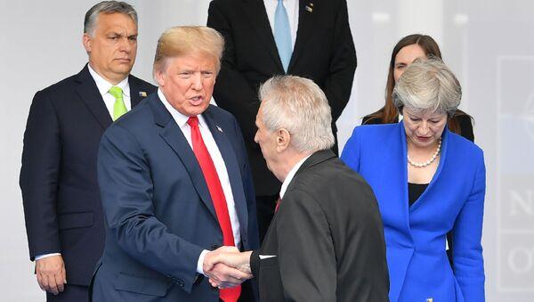 Americký prezident Donald Trump a prezident ČR Miloš Zeman - Sputnik Česká republika