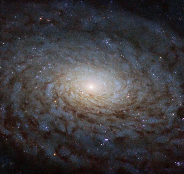 Spirální galaxie NGC 4380. - Sputnik Česká republika