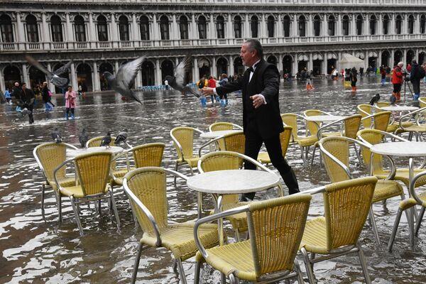 Muž odhání holuby na náměstí svatého Marka v Benátkách - Sputnik Česká republika