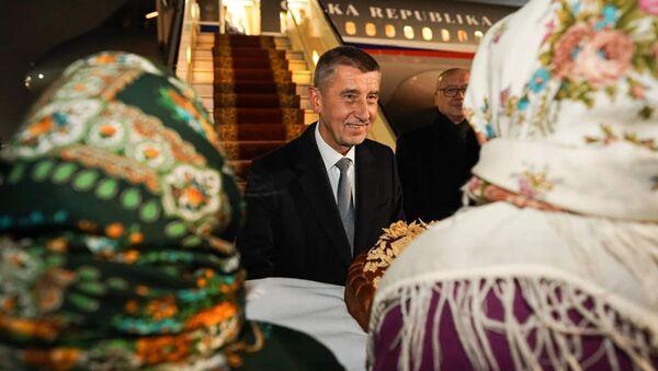 Český premiér Andrej Babiš po příletu do Kyjeva - Sputnik Česká republika