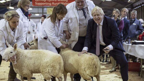 Премьер-министр Великобритании Борис Джонсон посетил выставку округа Уэльс в Лланельведде, Уэльс - Sputnik Česká republika