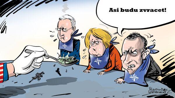 Karikatura USA překrmily NATO svými zbraněmi - Sputnik Česká republika