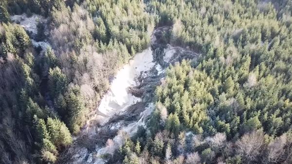 Muž se vydal do epicentra ekologické katastrofy na Slovensku. Podívejte se na to, co tam natočil - Sputnik Česká republika