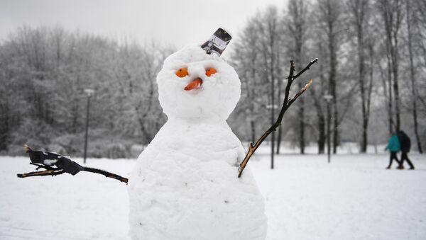 Sněhulák v jednom z moskevských parků - Sputnik Česká republika
