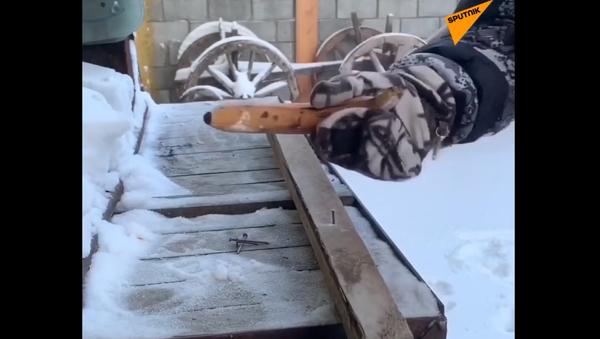 """""""Všechno se mění na kladivo."""" Uživatel ukázal, jak používá ovoce při padesátistupňovém mrazu - Sputnik Česká republika"""