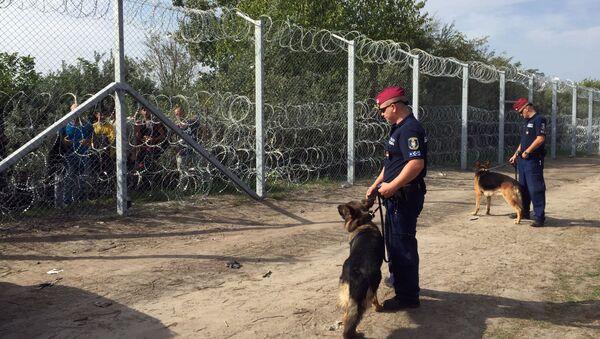 Maďarská hranice - Sputnik Česká republika