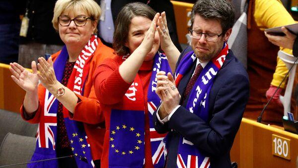 Zástupci Velké Británie v Evropském parlamentu 29. ledna 2020 - Sputnik Česká republika