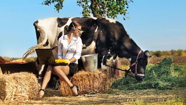 Dívka s počítačem sedí vedle krávy - Sputnik Česká republika