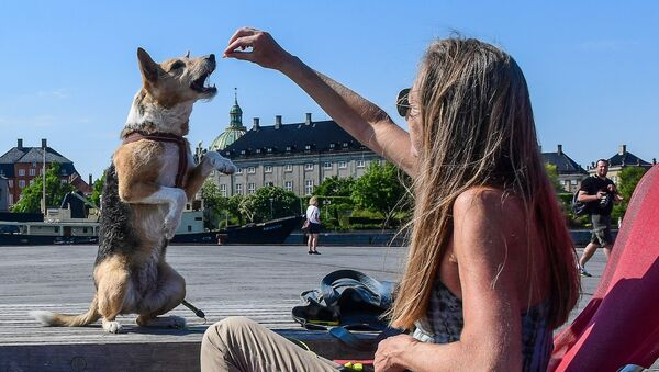 Na nábřeží. Kodaň - Sputnik Česká republika