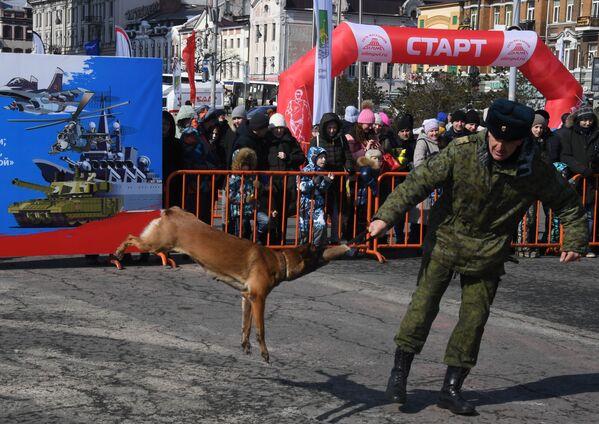 Kynolog spolu se svým psem na jedné z akcí uspořádané při příležitosti oslav Dne obránce vlasti ve Vladivostoku. - Sputnik Česká republika