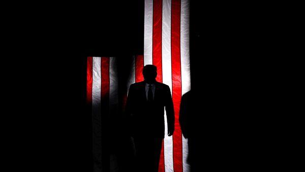 Americký prezident Donald Trump na pozadí americké vlajky - Sputnik Česká republika