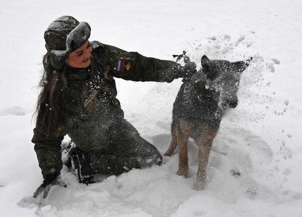Kynoložka se psem během soutěže vojenských kynologů Věrný přítel v Ussurijsku, Rusko. - Sputnik Česká republika