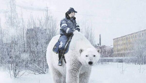 Lední medvědi, obří hadi a roboti jako řidiči v autobusech: Petrohrad, jak jste jej ještě nikdy neviděli - Sputnik Česká republika