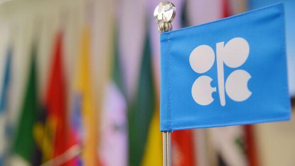 Vlajka OPEC - Sputnik Česká republika