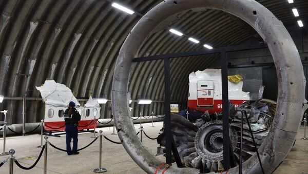 Tisková konference Rady bezpečnosti Nizozemí o MH17 - Sputnik Česká republika