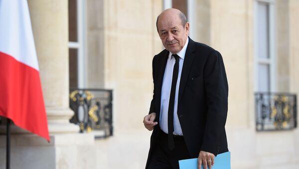 Francouzský ministr obrany Jean-Yves Le Drian - Sputnik Česká republika