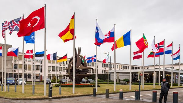 Vlajky NATO v Bruselu - Sputnik Česká republika