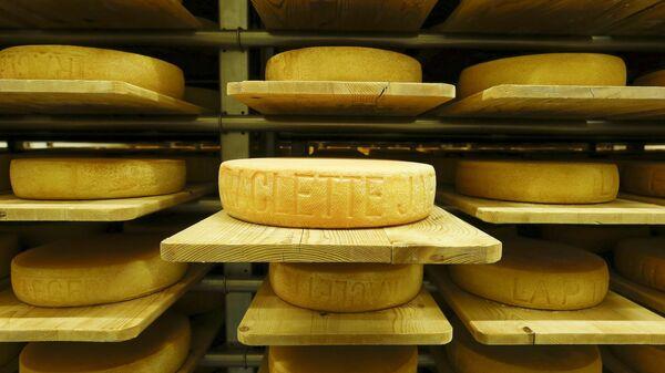 Sýr. Ilustrační foto - Sputnik Česká republika