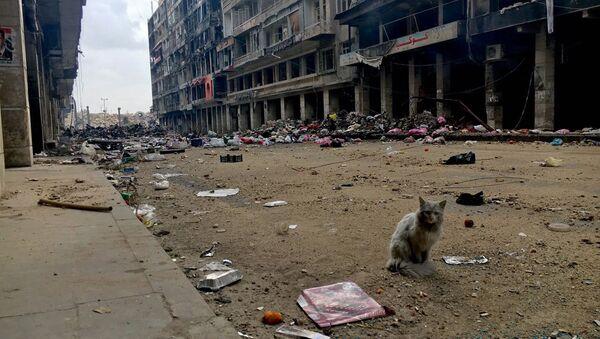Syrské město Aleppo - Sputnik Česká republika