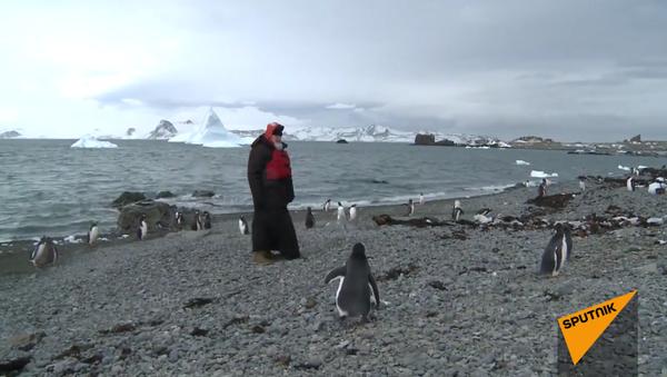 Patriarcha navštívil tučňáky na Antarktidě - Sputnik Česká republika