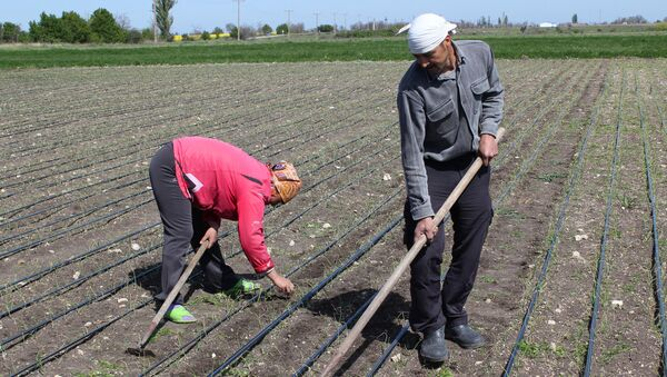 Zemědělci - Sputnik Česká republika
