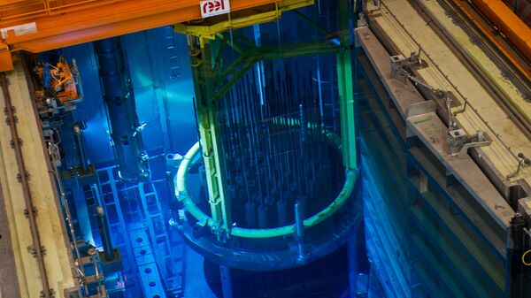 Jaderný reaktor - Sputnik Česká republika
