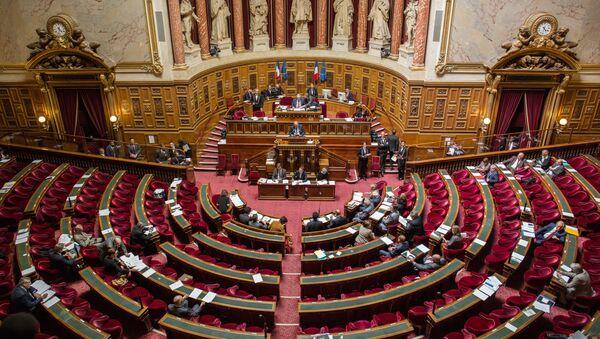 Senátoři během hlasování - Sputnik Česká republika
