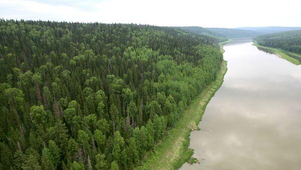 Řeka Velký Pit v Krasnojarském kraji - Sputnik Česká republika