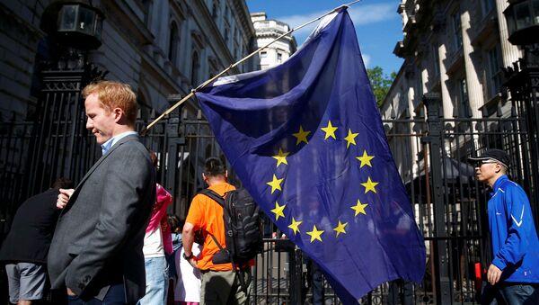 Muž s vlajkou EU - Sputnik Česká republika