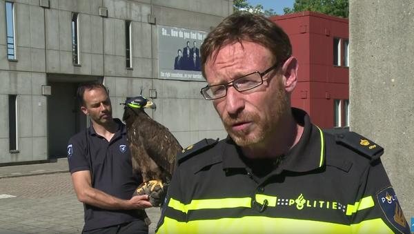 Policie Nizozemska naučila dravé ptáky lovit bezpilotní letouny - Sputnik Česká republika
