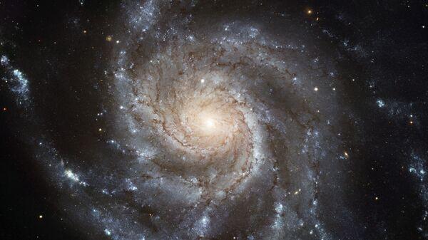Galaxie Větrník – galaxie v souhvězdí Velké medvědice   - Sputnik Česká republika