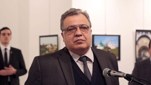 Zemřelý ruský velvyslanec v Turecku Andrej Karlov v galerii moderního umění v Ankaře. - Sputnik Česká republika