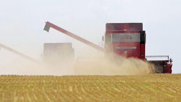 Zemědělství. Ilustrační foto - Sputnik Česká republika