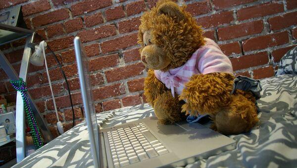 Ruský medvědí hacker - Sputnik Česká republika