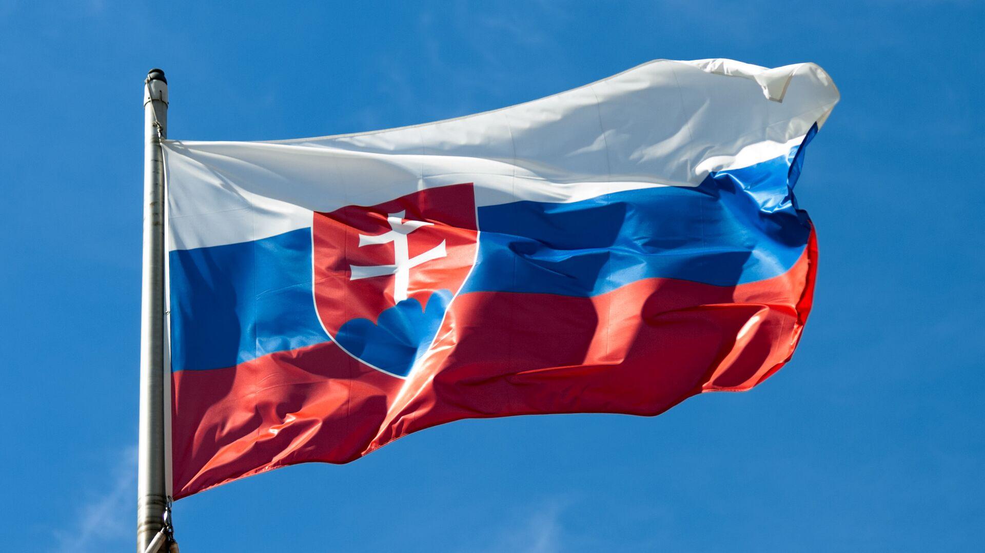 Slovenská vlajka  - Sputnik Česká republika, 1920, 13.06.2021