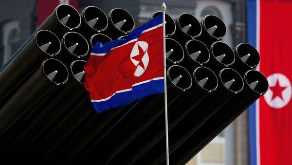 Korejská vlajka - Sputnik Česká republika