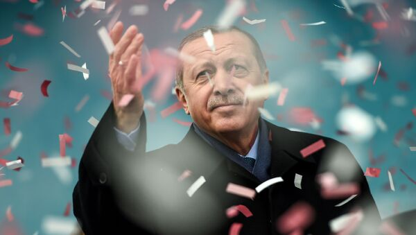Turecký prezident Recep Tayyip Erdogan na mítinku v Istanbulu - Sputnik Česká republika
