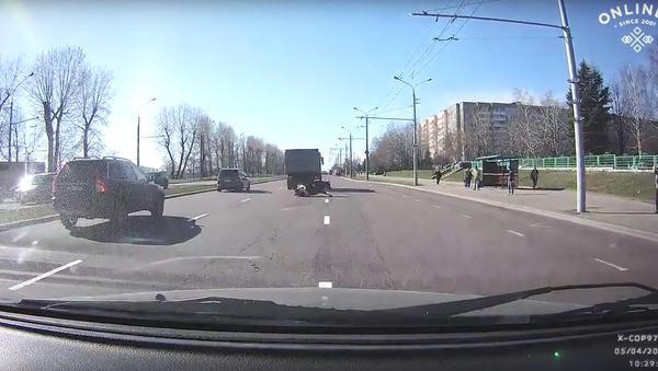 Kráva vypadla z kamionu - Sputnik Česká republika