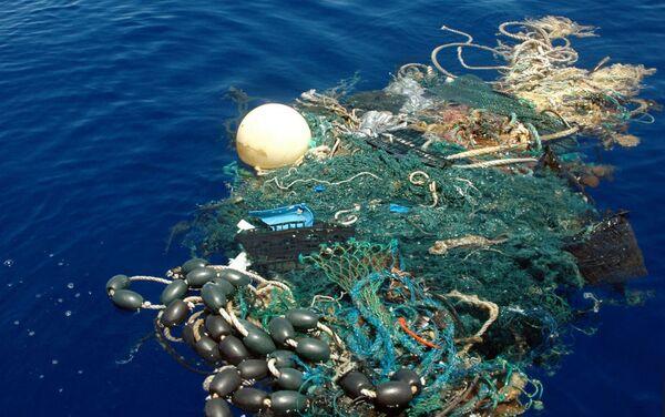 Tajemství světového oceánu - Sputnik Česká republika