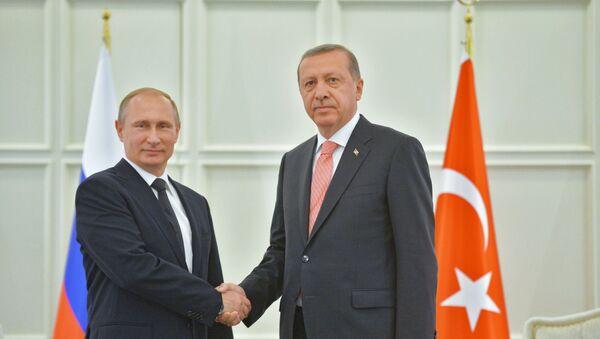 Putin a Erdogan jednali v Baku - Sputnik Česká republika