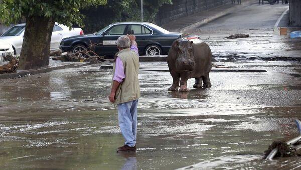 Záplava v Tbilisi - Sputnik Česká republika
