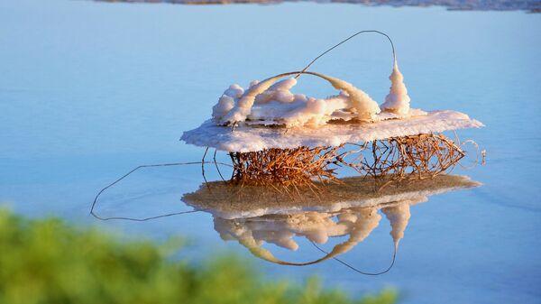 Mrtvé moře - Sputnik Česká republika
