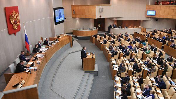 Zasedání Státní Dumy - Sputnik Česká republika