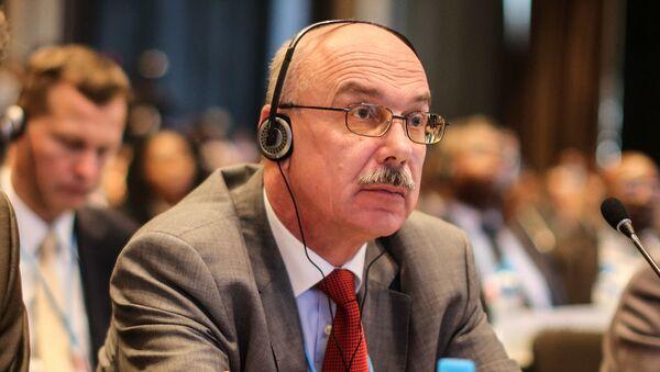 Stálý zástupce Ruska při mezinárodních organizacích ve Vídni Vladimir Voronkov - Sputnik Česká republika
