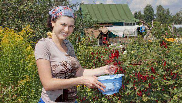 Žena sbírá rybíz na chatě - Sputnik Česká republika
