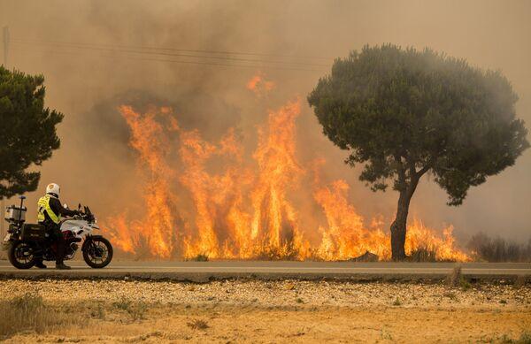 Policista pozoruje šíření lesního požáru na jihu Španělska - Sputnik Česká republika