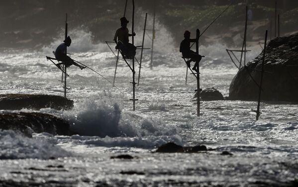 Rybáři loví ryby na Srí Lance ve městě Halle - Sputnik Česká republika