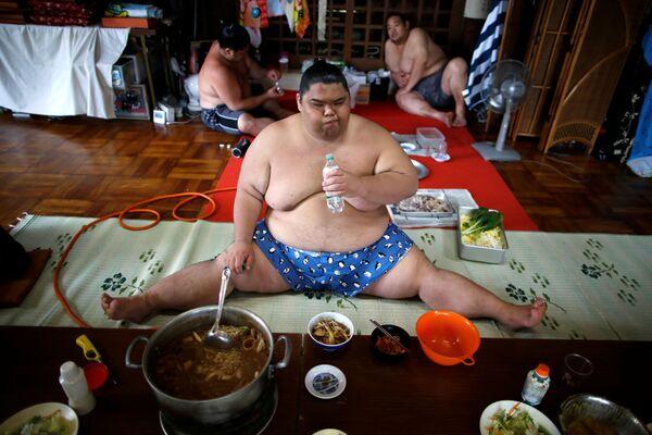 Bojovník sumo v hlavní síni chrámu Ganjoji Yakushido v Nagoji, Japonsko - Sputnik Česká republika